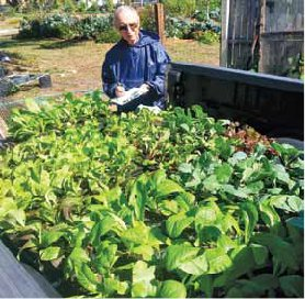 Bill Bilodeau with seedlings for a Chamber of Commerce  dinner centerpieces.