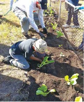 SUAC Board member, Ray Wonderlich, III, and six-year old volunteer, Jonathan Miller, participating in a 10,000 Greens planting day.