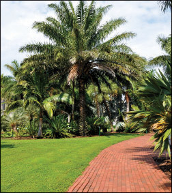 Winding pathways throughout Gizella Kopsick Park
