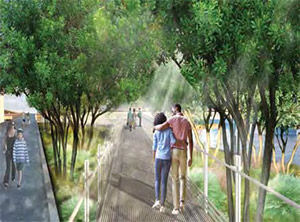 A boardwalk surrounded by beautiful native plantings and shade trees will line the north side of Pier Park.