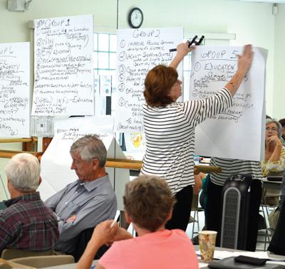 CONA annual goals workshop